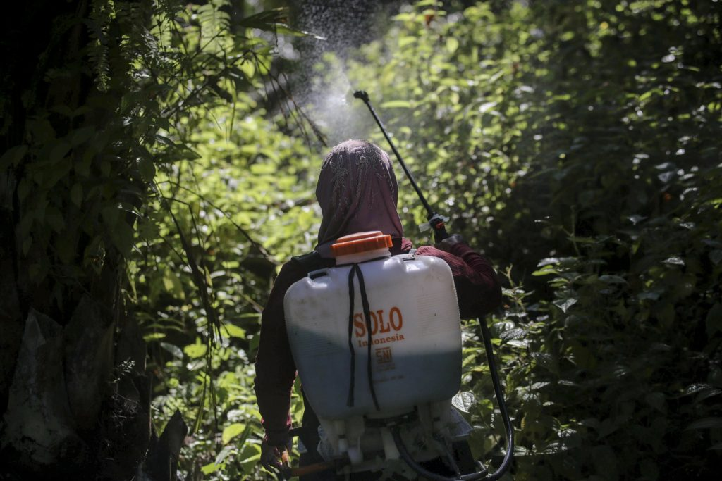 Rape, abuses in palm oil fields linked to top beauty brands …